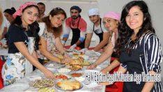 Halk Eğitim Aşçılık Kursları Aşçı Yardımcısı